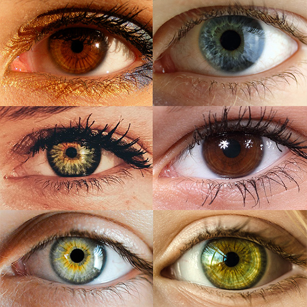 trivia-on-different-colored-eyes